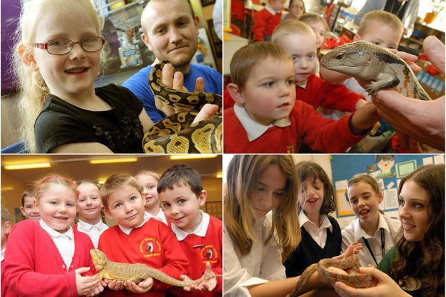 Is there a South Tyneside retro reptile scene that you recognise? Take a look and tell us more.