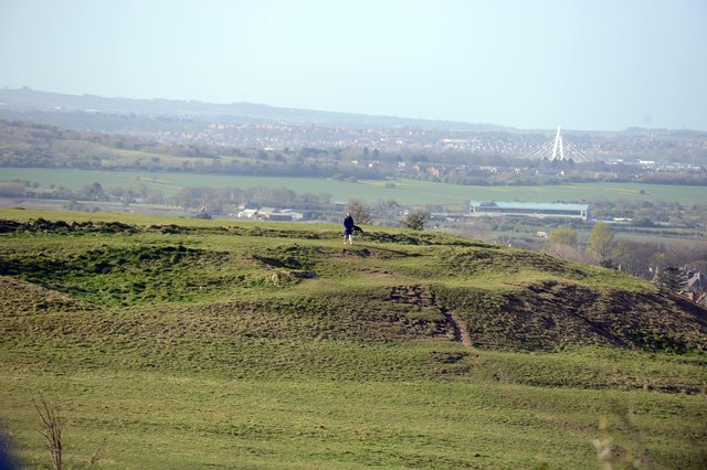 Cleadon Hills is one of South Tyneside's most beautiful natural assets