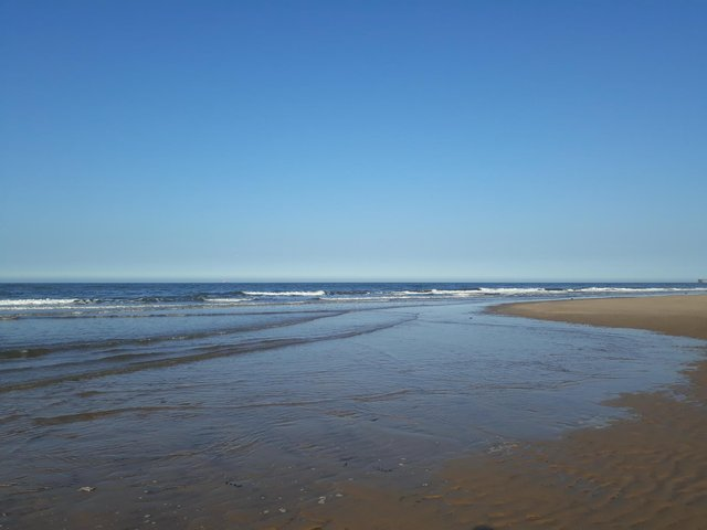 Northumbrian Water teams have been working to clean-up beaches in South Shields and across the North East