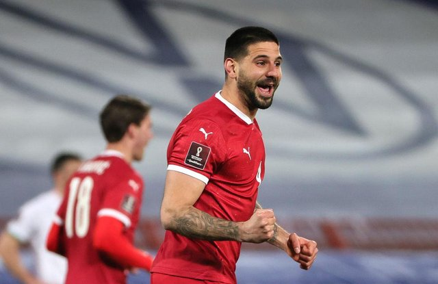 Aleksandar Mitrovic celebrates after scoring Serbia's second goal.