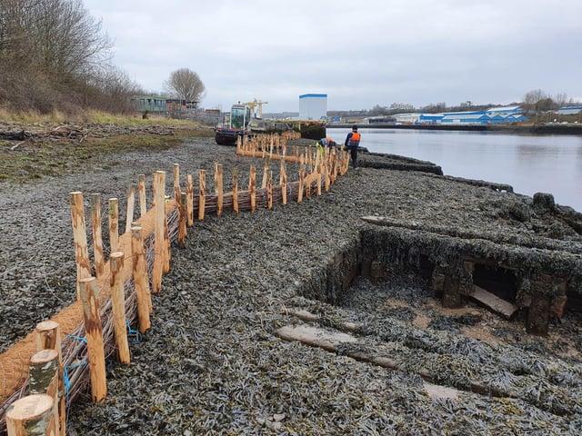 Habitat creation work on Hebburn riverside.