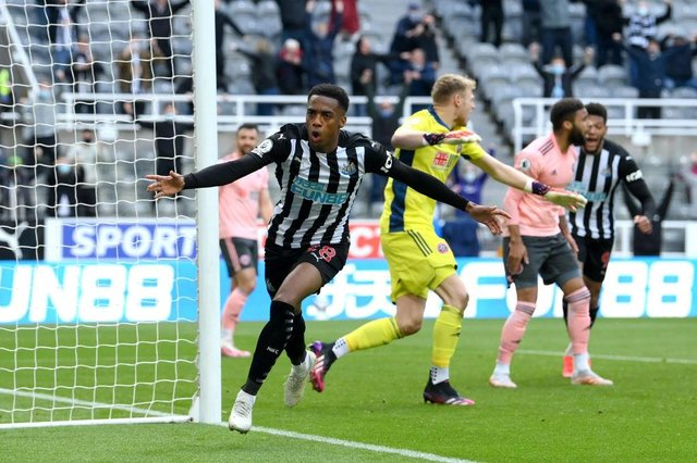 Joe Willock of Newcastle United celebrates after scoring his team's first goal during the Premier League match between Newcastle United and Sheffield United at St. James Park on May 19, 2021 in Newcastle upon Tyne, England.