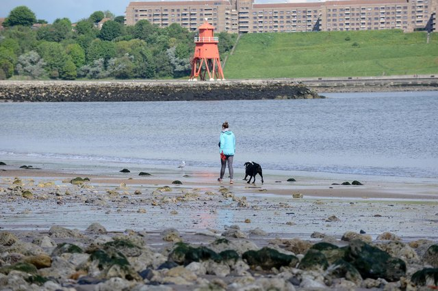 South Tyneside will be part of a series of nature-based projects to help tackle flooding.