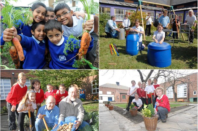 We have 9 South Tyneside school garden photos for you to enjoy from the Shields Gazette archives. Take a look.