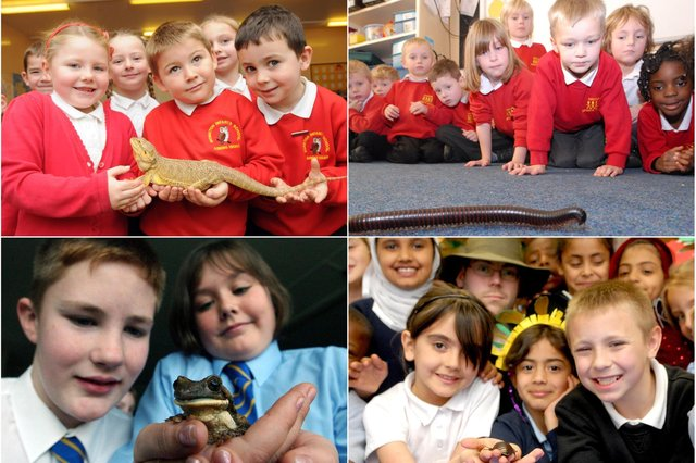 Great reminders of the day these children met some exotic visitors.