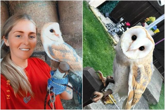 Barn owl Blinks with owner Ashleigh Ferguson.